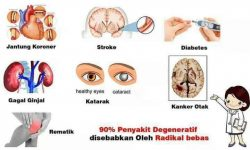 penyakit degeneratif